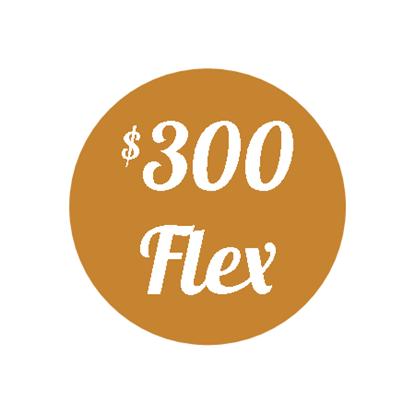 Plan H - $300 Flex Plan