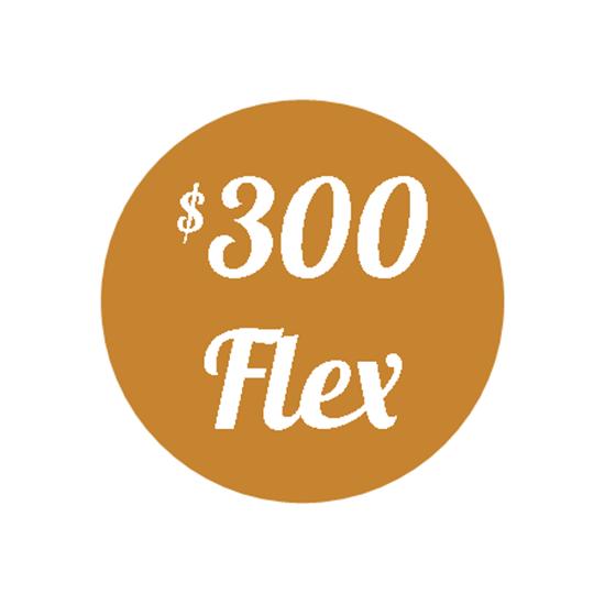 Picture of Plan H - $300 Flex Plan
